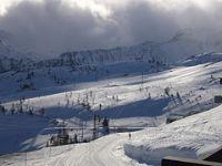 ski_foshie.jpg