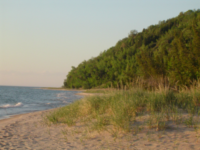 Michigan Beach
